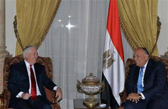 بدء لقاء مغلق بين وزيري خارجية مصر وأمريكا