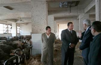 رئيس جامعة المنوفية يتفقد كلية الطب البيطرى والمزرعة البحثية لكلية الزراعة   صور