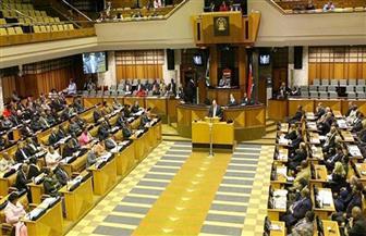 برلمان جنوب إفريقيا ينتخب رامابوسا رئيسا للبلاد