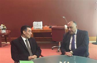 وزير الخارجية يلتقي المدير التنفيذي للمجلس الدولي للزيتون بمدريد | صور