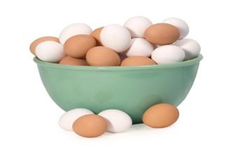 تعرف على أسعار البيض في رمضان كما أقرها رئيس شعبة تجار الثروة الداجنة