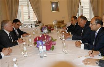 وزير الخارجية يلتقي نظيره الأرميني على هامش مؤتمر ميونيخ
