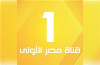 ضم قنوات الهيئة الوطنية للإعلام الليلة احتفالا بانطلاق قناة مصر الأولى