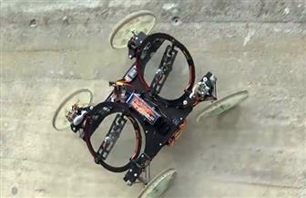 """تقنية جديدة لتعليم الروبوتات تسلق الجدران مثل """"الصراصير"""""""