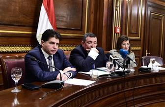 وزيرة التخطيط: نسعى لتسديد مديونية ماسبيرو