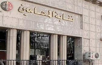 """السبت.. اجتماع استثنائي لـ """"المحامين العرب"""" بدعوة مصرية لرفض العدوان التركي على سوريا"""