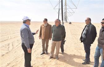 محافظ المنيا يتفقد مشروع استزراع 20 ألف فدان