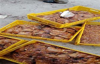 ضبط طن دجاج مجمد غير صالح بمركز السنبلاوين بالدقهلية | صور