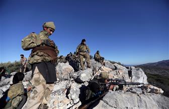 المرصد: مقتل 17 من القوات التابعة للجيش السوري في غارات تركية على عفرين