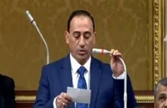 برلمانى يناشد أصحاب المصانع المتعثرة التقدم بطلبات للحكومة لإعادة تشغيلها