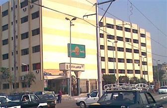 رئيس حي المطرية يقود حملة على مربي الخراف ويصادر 9 منها