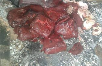 ضبط 102 كيلو كبدة منتهية الصلاحية بحي النهضة وأسماك فاسدة في سوق العبور | صور