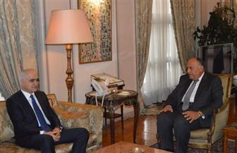 سامح شكري يستقبل وزير اقتصاد أذربيجان ويؤكد اعتزاز مصر بالعلاقات بين البلدين | صور