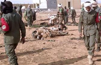 """مصر تعرب عن خالص تعازيها لفرنسا في ضحايا قوات العملية العسكرية """"بارخاني"""" بمنطقة الساحل"""