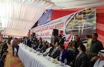 مؤتمرات جماهيرية حاشدة لدعم السيسي في 5 محافظات | صور