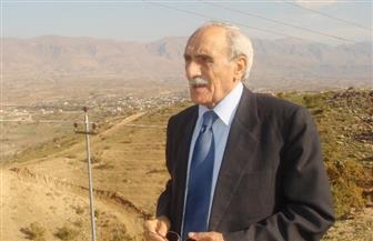 قيادي كردي سوري: دخول القوات الحكومية عفرين هدفه قطع الطريق أمام تركيا