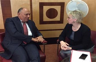وزير الخارجية يبحث مع نظيرته السويدية تنشيط التعاون الاقتصادي بين البلدين وتطورات سد النهضة