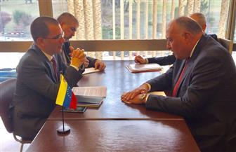 شكري يلتقي وزير خارجية فنزويلا على هامش الدورة 37 لمجلس حقوق الإنسان