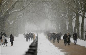 الثلوج تغطي قصر بكنجهام في لندن