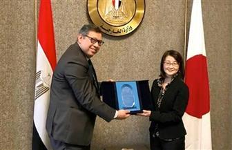"""أمين عام الوكالة المصرية للشراكة من أجل التنمية يبحث التعاون الثلاثي مع """"الجايكا"""" بإفريقيا"""