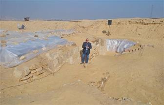 استعدادات لإعلان العناني عن كشف أثري جديد بمنطقة الأهرامات | صور