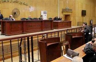 تأجيل محاكمة 28 متهما باقتحام مبنى الإرشاد الزراعى والإدارة البيطرية بالمنيا