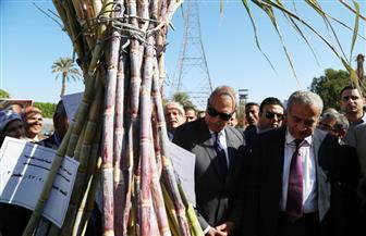"""""""الهجان"""": قنا الأولى في إنتاج قصب السكر بالجمهورية.. ويطالب بإنشاء مصنع للورق في نجع حمادي   صور"""