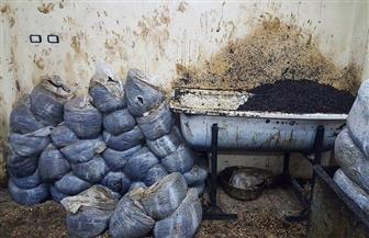 ضبط 30 طن تبغ مغشوش من ورق الخس والموز قبل بيعها في القناطر الخيرية   صور