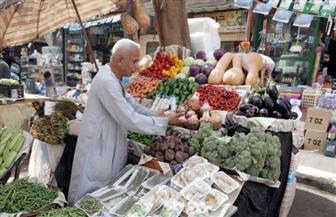 أسعار الخضراوات اليوم... ارتفاع الطماطم 25 قرشا وانخفاض الكوسة جنيها