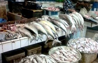 ضبط 7 أطنان من الأسماك المجمدة المخالفة قبل طرحها بالأسواق في الدقهلية