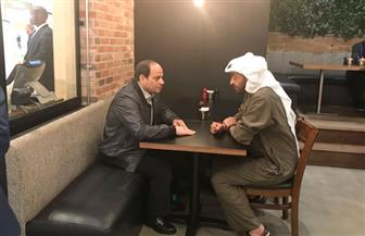 الرئيس السيسى والشيخ محمد بن زايد يتجولان فى أحد المراكز التجارية |  صور وفيديو