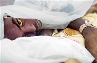 تزايد عدد حالات الإصابة المؤكدة بالحمى الصفراء في البرازيل