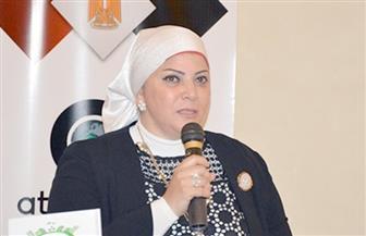 """العبسي لـ""""بوابة الأهرام"""": المرأة """"صانعة سلام"""".. ودعم الرئيس السيسي والحكومة لها تأكيد على نجاح تجربتها"""
