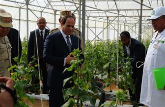تفاصيل افتتاح الرئيس السيسي للمرحلة الأولى من مشروع الصوب الزراعية بقاعدة نجيب