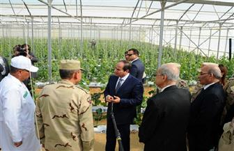 """الرئيس السيسي يدعو القطاع الخاص لاستئجار """"الصوب الزراعية"""" ويوجه الحكومة بالتأمين على العمالة اليومية"""