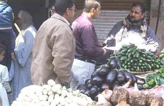 تحرير 7 محاضر تموينية في حملة على أسواق البلينا بسوهاج