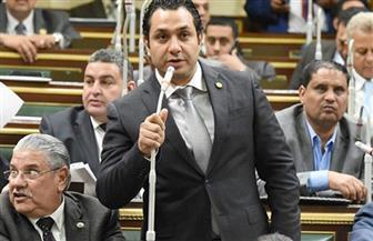 برلماني ينظم مؤتمرا بمصر القديمة لدعم الرئيس السيسي.. اليوم