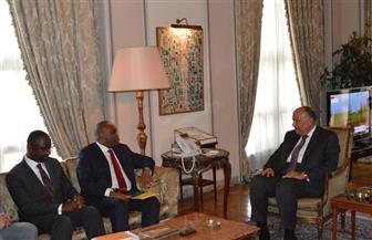 سامح شكري يلتقي رئيس البنك الإفريقي للتصدير ويبحث سبل دفع التعاون في القارة الإفريقية