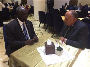 سامح شكري يلتقي وزير الدفاع بجنوب السودان