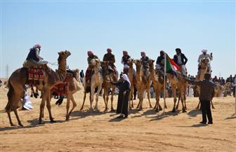 انطلاق فعاليات مهرجان الإسماعيلية لسباقات الهجن السابع عشر | صور
