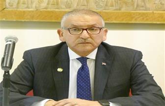 سفير مصر بواشنطن: لجنة تسوية الوضع التجنيدي لن تنهى أعمالها قبل تسوية المشكلات لكل من قدم أوراقه