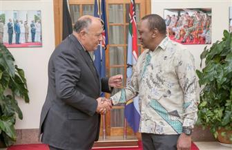 وزير الخارجية يلتقي رئيس كينيا حاملا رسالة من الرئيس السيسي