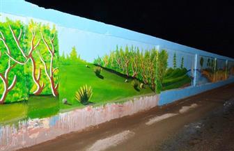 تجميل وتطوير شوارع مدينة طهطا في سوهاج   صور