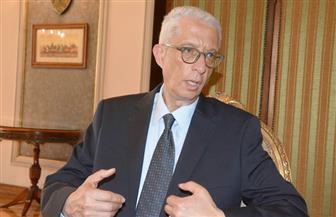 """""""لوزا"""": عمليات موحدة للخارجية وهيئة الانتخابات.. والجامعة العربية أنهت إجراءات المتابعة"""