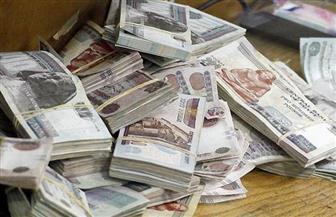 ضبط مزارع ونجله بتهمة الاتجار بمدخرات المصريين بالخارج في السوق السوداء