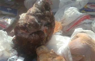 ضبط كبدة ولحوم فاسدة بحملة بيطرية في حي شرق مدينة نصر| صور