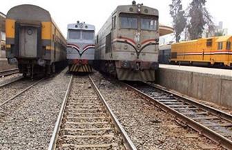 نخلة تتسبب في توقف حركة القطارات بسوهاج