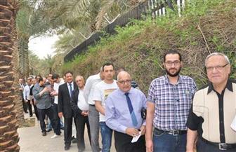 المصريون بالكويت يتوافدون على مقر سفارتهم بكثافة في اليوم الثاني للاقتراع | فيديو وصور