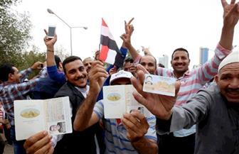 """ممثل الجالية المصرية بفرنسا: انتخابات المصريين بالخارج """"ملحمة وطنية"""""""