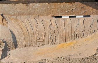 متحف مسلة المطرية يستقبل أربع قطع أثرية جديدة | صور